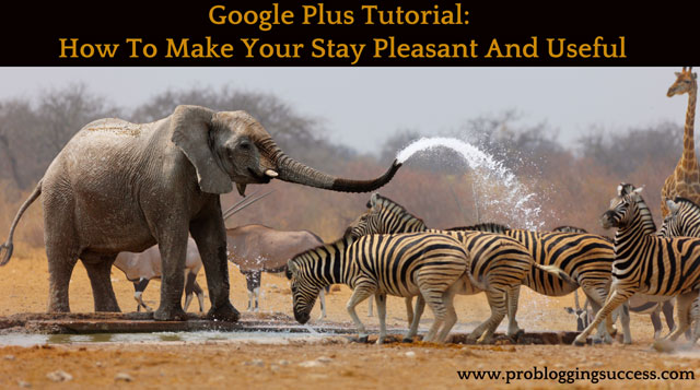 Google-Plus-Tutorial--How-To-Make-Your-Stay-Pleasant-And-Useful