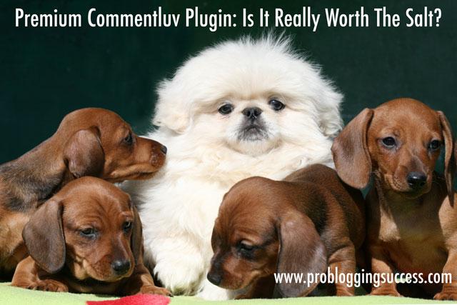 Premium-Commentluv-Plugin