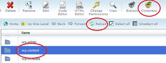 compress wp-content folder